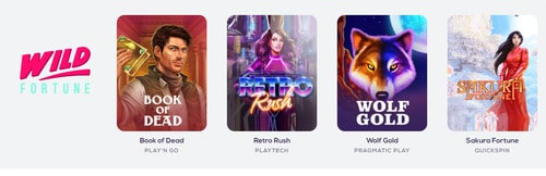 Online Casino Wild Fortune Tournament Spil